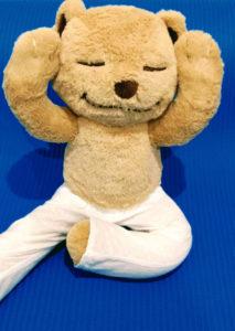 Mindful Kiddo Meddy Teddy