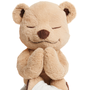 Meddy Teddy Lotus Prayer Pose