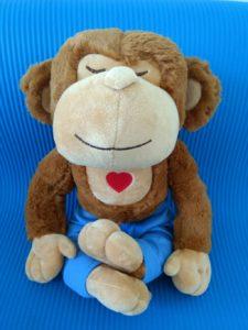 Meddy monkey