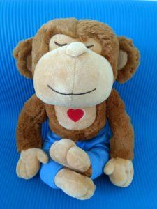 meddy monkey-teacher's assistant